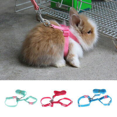 Adjustable Cat Rabbit Walking Harness with Bell Harness Collar Leash Lead