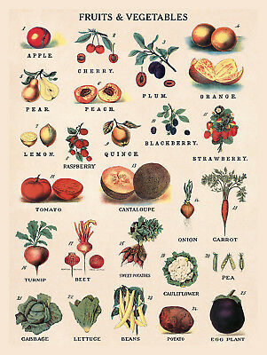 Fruits And Vegetables, Retro Vintage Aluminium Sign Gift, Bar/Pub Kitchen