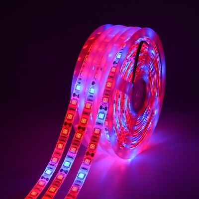 5050 300LED Grow lights red:Blue DC12V 3:1,4:1,5:1 led strip For Plant Growing