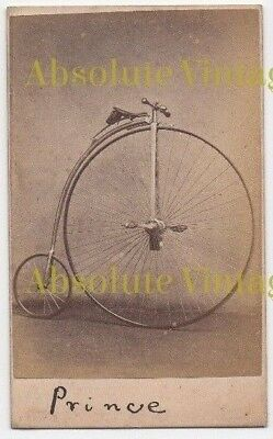 Early Cdv Photo Prince Penny Farthing Bicycle Antique Carte De Visite