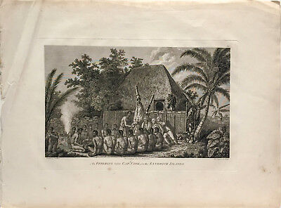 Original Antique Capt. Cook Engraving (1784) - An Offering Before Captain Cook