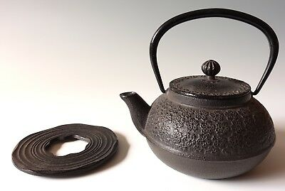 Japanese Cast Iron enamel lined teapot with Trivet Nice