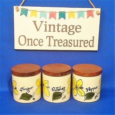 Toni Raymond 3 Spice Jars with Wooden Lids (Nutmeg, Ginger, Pepper) Vintage 50s