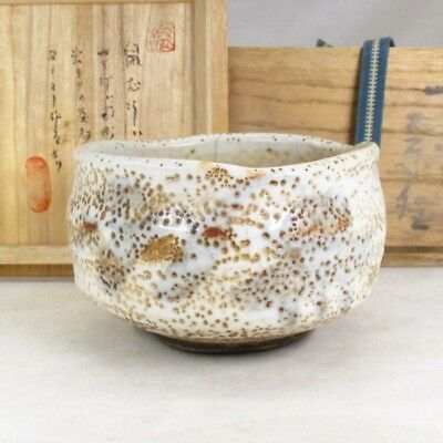 D809: Popular Japanese tea bowl of old NEZUMI SHINO pottery with appraised box