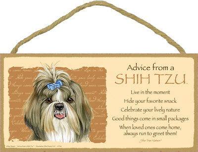 "Advice from a Shih Tzu with bow Lives Here Sign Plaque Dog 10"" x 5"" sign"