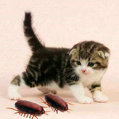 Electronic Pet Cats Toy With Battery Cockroach Interactive Toys Pet Accessory AU