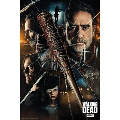 The Walking Dead-Smash / Characters-Poster 61cm x 91cm-LAMINATED Available-P5890