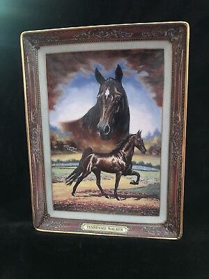 The Franklin Mint Collector Horse Plates. Sold as a set of eight plates.