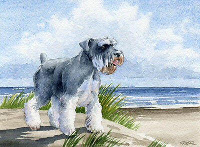MINIATURE SCHNAUZER Beach DOG Watercolor 8 x 10 Art Print Signed by Artist DJR