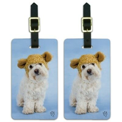 Bichon Maltese Puppy Dog Wearing Bear Hat Luggage ID Tags Cards Set of 2