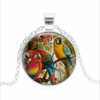 Sterling Silver Necklace Women BIRD Pendant RAINBOW PARROT Free $10 GIFT R1125