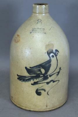 "Rare 3 Gal Cobalt Blue ""parrot"" Decorated 19Th C Stoneware Jug From Boston"