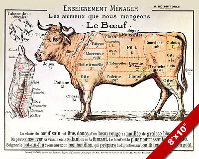 vintage french beef meat diagram poster painting 8x10 real canvas art print  new