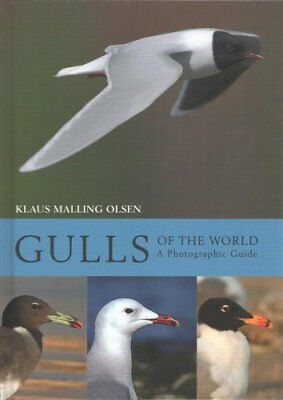 Gulls of the World A Photographic Guide by Klaus Malling Olsen 9780691180595