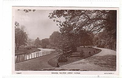 HAWICK - RP of Wilton Lodge Avenue, Mailed 1908 at HAWICK to WHITING BAY, ARRAN.