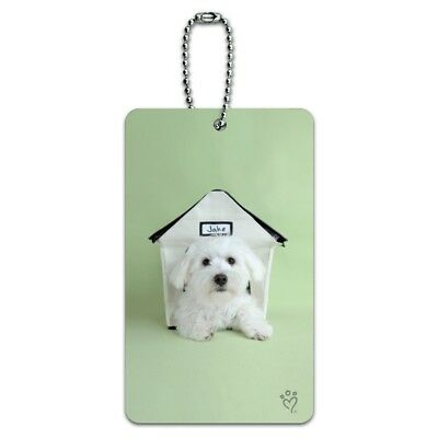 Bichon Frise Maltese Puppy Dog in House Luggage Card Suitcase Carry-On ID Tag