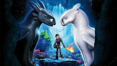 "014 How to Train Your Dragon 3 - The Hidden World Hiccup Movie 42""x24"" Poster"