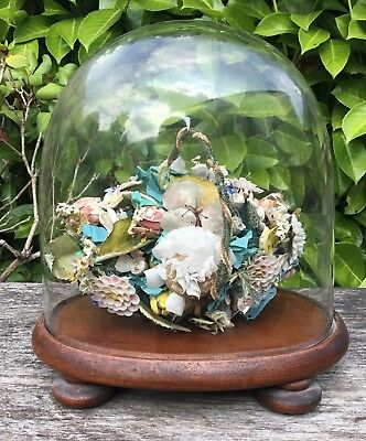 Old Antique Victorian Shell Folk Art Flower Basket Glass Dome Mahogany Base