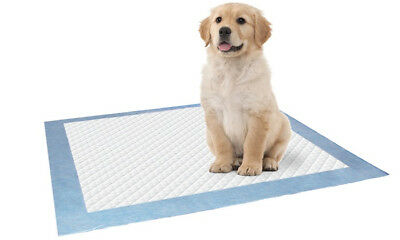10pk LARGE PUPPY TRAINER TRAINING PADS TOILET PEE WEE MATS DOG CAT 60x60CM