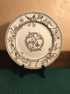 Antique Brown Transferware J F Wileman Wild Flowers Plate Fenton Staffordshire