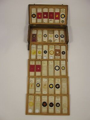 Cased collection of 36 Antique Microscope Slides.