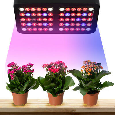 600W Full Spectrum 60Led Beads LED Grow Light Indoor Plant Lamp With Cooling Fan
