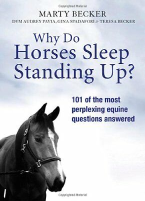 Why Do Horses Sleep Standing Up?-Marty Becker