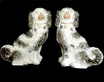 Pair Antique 19Th Century Staffordshire Pottery Spaniel Dogs