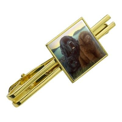 Newfoundland Dogs Puppies Countryside Square Tie Bar Clip Clasp Silver or Gold