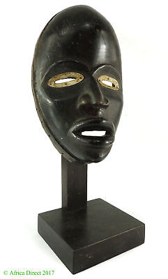 Dan Mask Deangle Liberia African Art Custom Stand