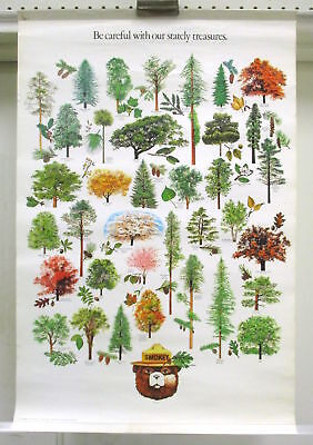 Lot of 7 SMOKEY THE BEAR Forest Fire Education Posters CFFP Vintage