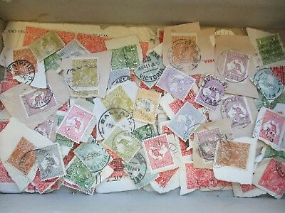 ESTATE: Kangaroos and KGV on paper unchecked unsorted  (3845)