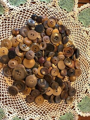 GREAT VINTAGE LOT 160 VEGETABLE IVORY BUTTONS Nut & Other cvd dyed fancy Lot2sp