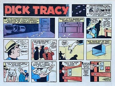 Dick Tracy by Chester Gould - large half-page color Sunday comic, April 23, 1972