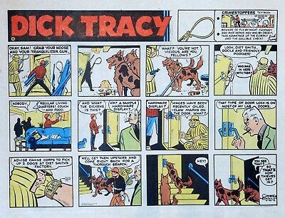 Dick Tracy by Chester Gould - large half-page color Sunday comic, April 30, 1972
