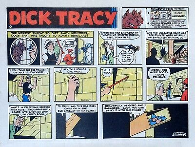 Dick Tracy by Chester Gould - large half-page color Sunday comic - May 7, 1972