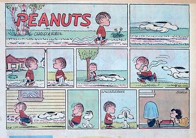 Peanuts by Charles Schulz - large half-page color Sunday comic - July 13, 1958