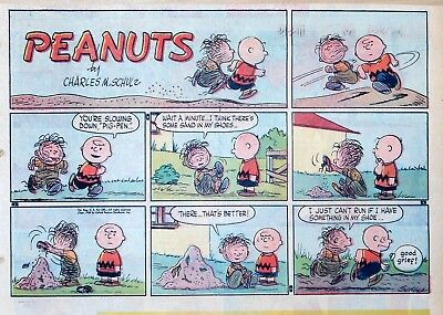 Peanuts by Charles Schulz - large half-page color Sunday comic - August 10, 1958