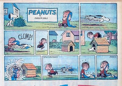 Peanuts by Charles Schulz - large half-page color Sunday comic - August 24, 1958