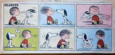 Peanuts by Charles Schulz - full color Sunday comic page - June 30, 1957
