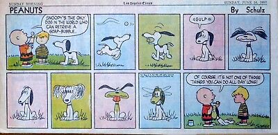 Peanuts by Charles Schulz - full color Sunday comic page - June 16, 1957