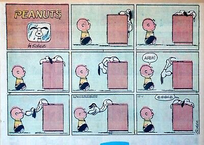 Peanuts by Charles Schulz - large half-page Sunday color comic - Dec. 1, 1957