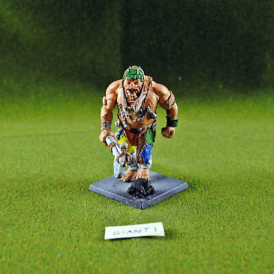 Warhammer Fantasy Giant, Metal - OOP - Games Workshop Citadel Orcs & Goblins