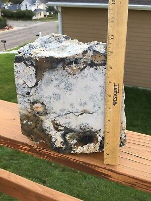 Wyoming Spanish Point Agate 40 Pound Boulder From The Big Horn Mountains
