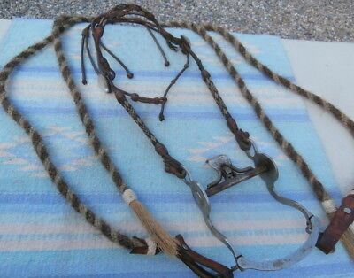 Old Hitched Horsehair Braided Horse Bridle Pansy Glass Rosettes Crockett Spade B