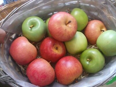 12 artificial plastic display apples fruit 6 green 6 red