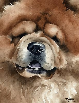 CHOW CHOW Dog Watercolor 8 x 10 ART Print Signed by Artist DJR