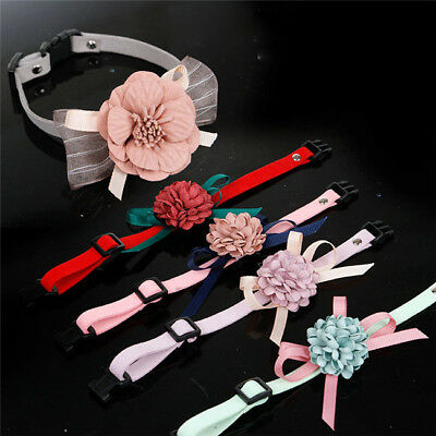 New Cute Pet Cat Dog Puppy Big Flower Adjustable Necklace Collars S