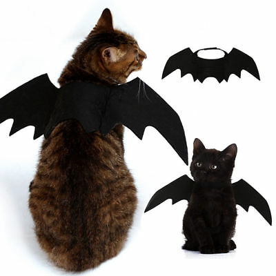 Lovely For Small Pet Dog Cat Bat Wings Halloween Wings Halloween Costume