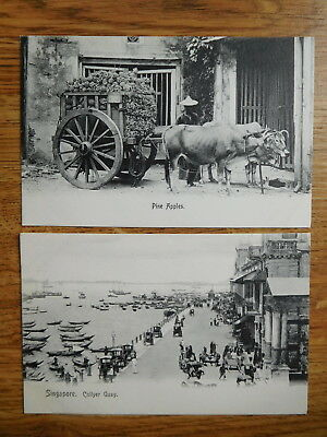 Singapore Postcard Collyer Quay & Pine Apples Cart by Wilson & Co Orchard Road